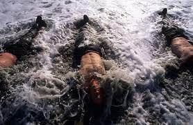 navy seal water