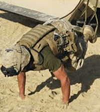 navy seal trx workout