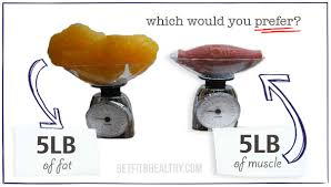 5-lbs-of-muscle-vs-5-lbs-of-fat