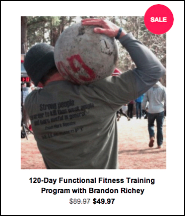 https://sgptonline.com/products/120-day-functional-fitness-training-program-with-brandon-richey
